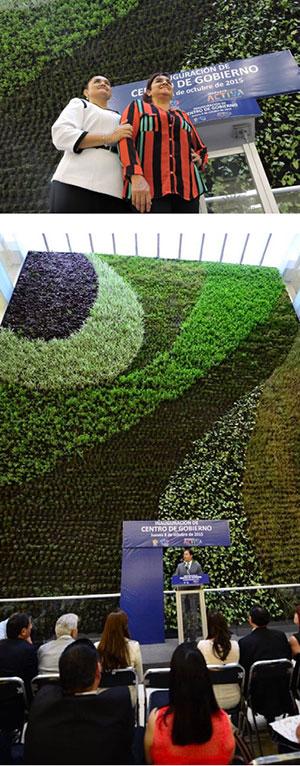 Artículo muro verde